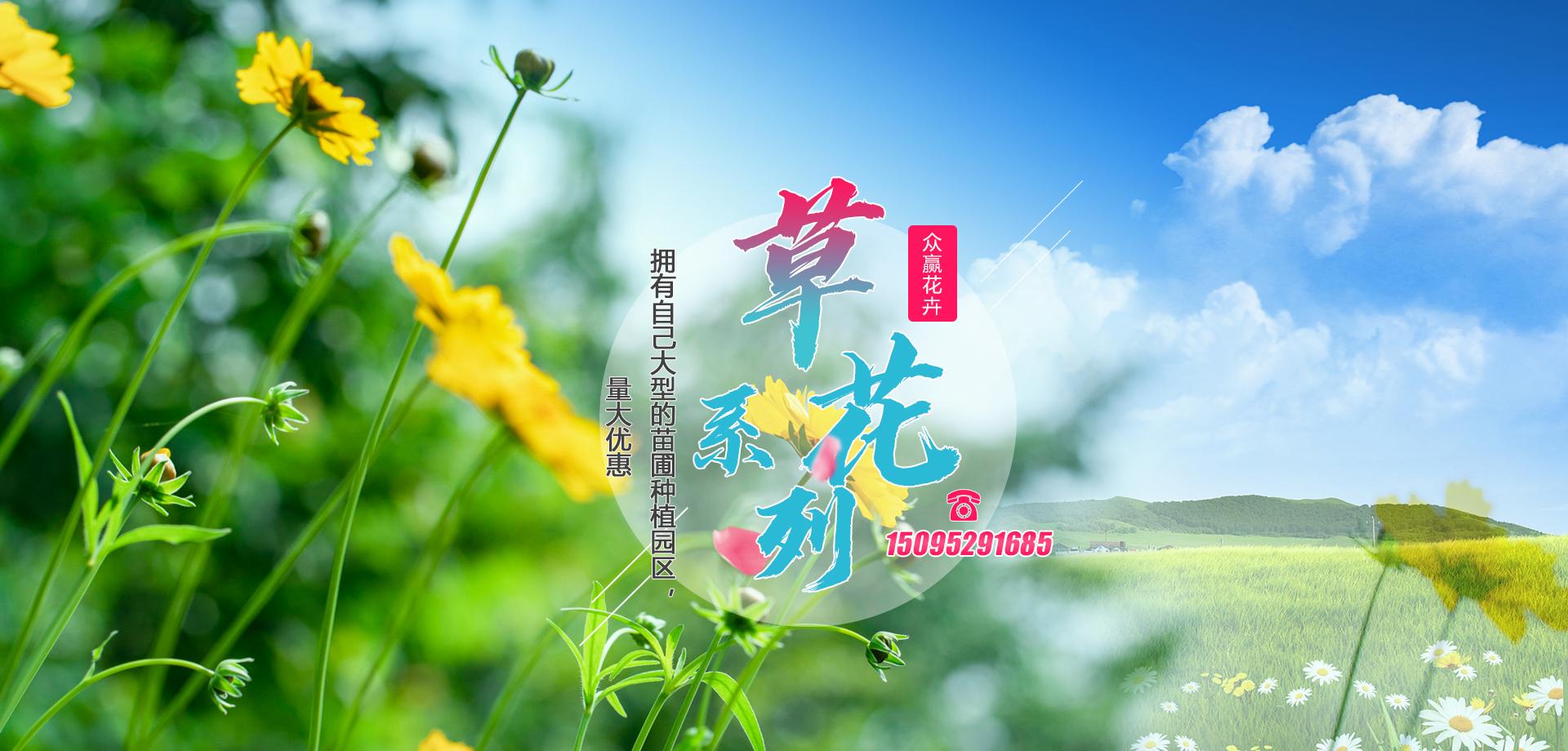 青州市众赢花卉苗木有限公司